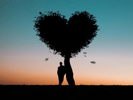 man alone with hearts shaped tree